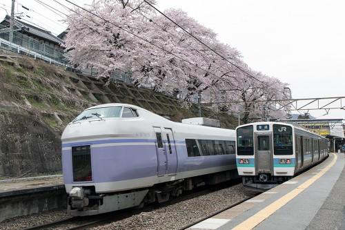 211系桜