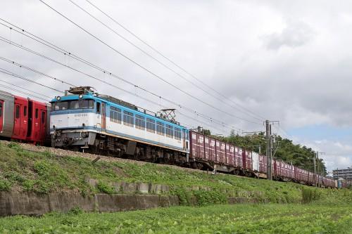 EF81-454
