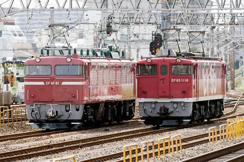 EF81-81とEF65-1118の並び