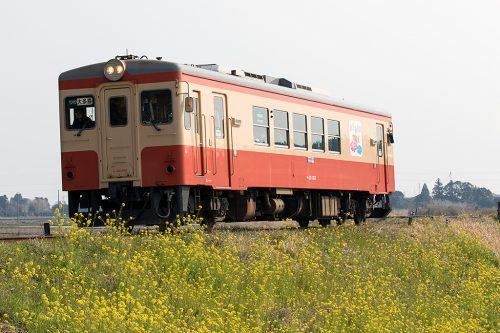 キハ20-1303 57D 西大原~上総東間