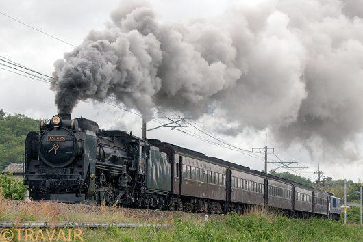 D51-498+旧客+EF64 試9432レ あしかがフラワーパーク~足利間
