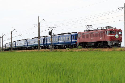 ED75-767 急行津軽