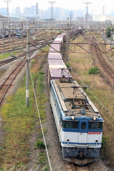 EF65-2065 77レ 東京貨物ターミナル